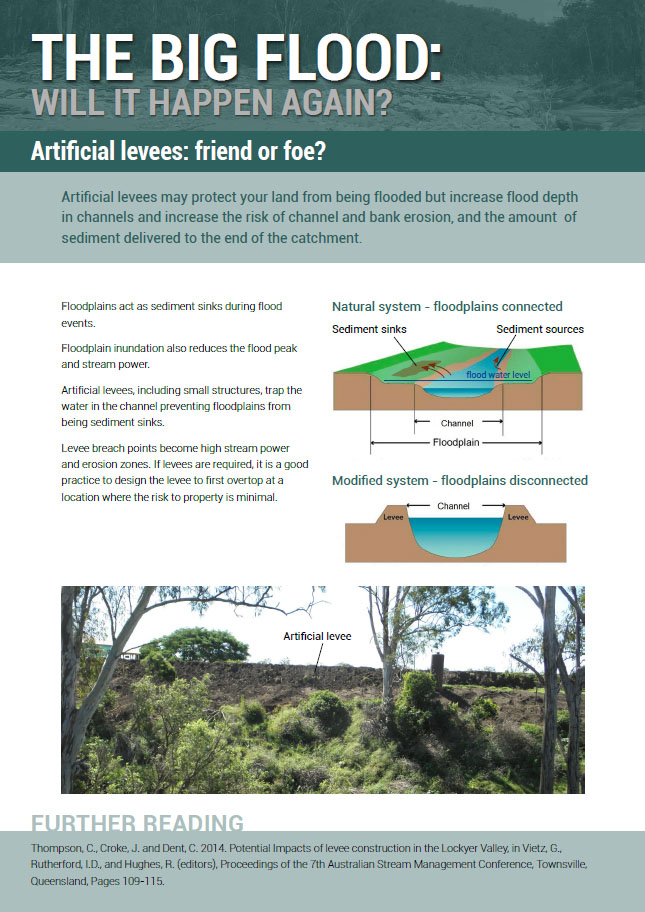 Artifical levees: friend or foe?